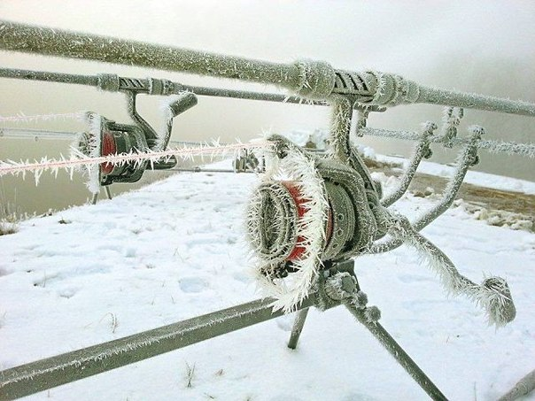 Зима - чудесное время года!