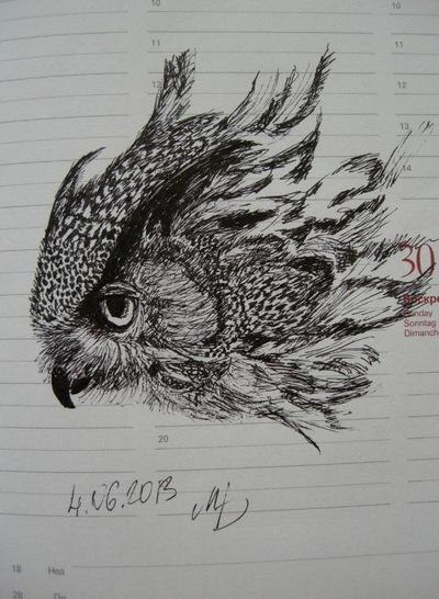 Sunny Owl, 4 января , Киев, id213381311
