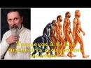 Трехлебов А В Как определить свой эволюционный уровень Смерд Веси Витязь и Ве
