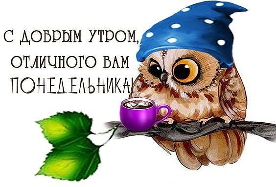https://pp.userapi.com/c846220/v846220996/198d39/LElAET4bXPo.jpg