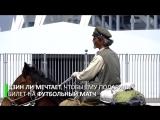 Китаец отправился в путешествие на лошади по городам ЧМ-2018_HD.mp4
