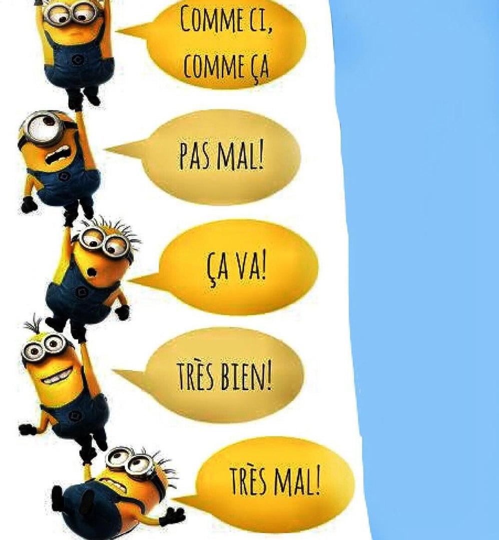 лексика в картинках французский язык для всех