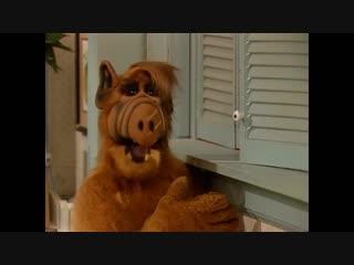 Alf Quote Season 3 Episode 20 Он полезен
