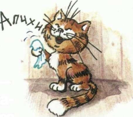 Апчхиии — вдруг чихнул кот