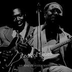 Muddy Waters альбом Gods of Blues - B.B. King vs. Muddy Waters