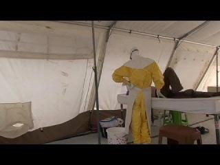 «Врачи без границ»: эпидемия Эболы в Западной Африке вышла из-под контроля