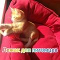 marina_vera_nadya video