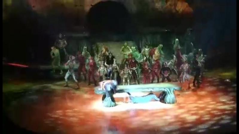2 июня 2018, Цирк дю Солей