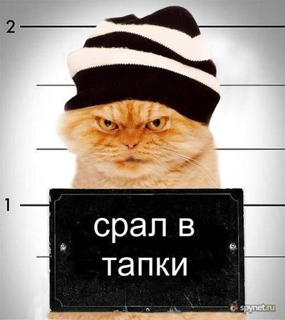 Артур Чунарев, 2 октября 1990, Смоленск, id214640096