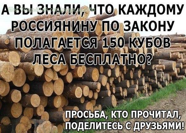 А ВЫ ЗНАЛИ, ЧТО КАЖДОМУ РОССИЯНИНУ ПО ЗАКОНУ ПОЛАГАЕТСЯ 150 КУБОВ ЛЕСА БЕСПЛАТНО