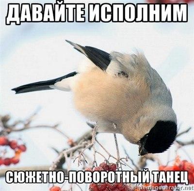 http://cs405329.userapi.com/v405329490/7446/p2pElzaxK8w.jpg