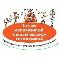 Логотип Воронежская цирковая студия