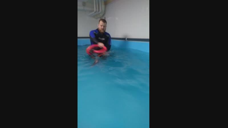 дастин в бассейне
