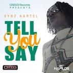 Vybz Kartel альбом Tell You Say