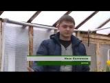«Сельский порядок» тюльпаны к 8 марта