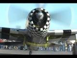 Six (6) Restored Republic P-47 Thunderbolt Fighters!