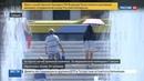 Новости на Россия 24 • Плюс 50 - не предел: пока одних заливает, других поджаривает