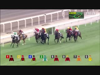 Pakistani Star _ What a Horse _ What a race_ We are best in the World_ Horse Race