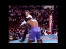 Terry Norris vs Donald Curry
