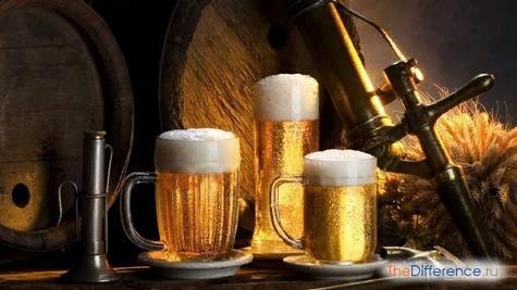 Разница между квасом и пивом Напитки, получаемые посредством брожения, пользуются широкой популярностью среди наших соотечественников. Взять хотя бы старую добрую медовуху, молодое вино, пиво