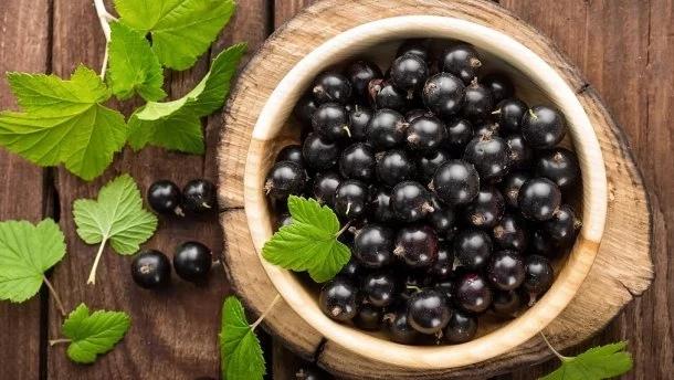 Сок черной смородины - лучшее средство для иммунитета