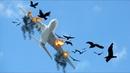 A380 Got Bird Strike Right Before Landing At The Runway X Plane 11