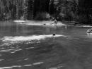 Место под солнцем A Place in the Sun 1951 Режиссер Джордж Стивенс драма мелодрама