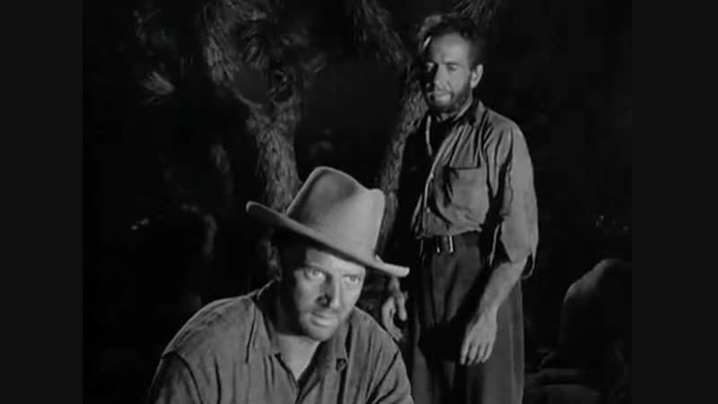 Сокровища Сьерра Мадре ( 1947 ) приключения боевик