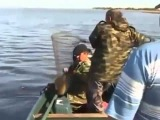 Где можно поймать сома на банки. Ловля сома с лодки