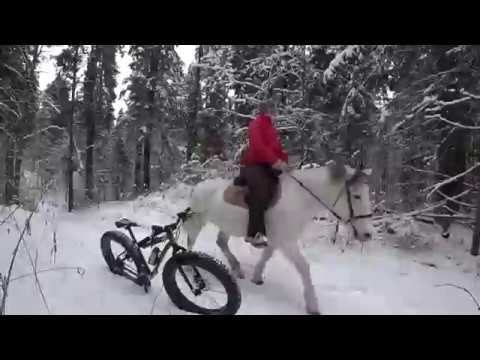 Зима Фэт Байк