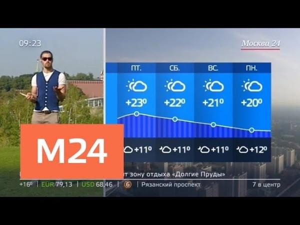 Утро на выходных жителей столицы ждет комфортная погода Москва 24