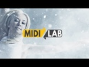🎶 Copyright Free Music Born To Fly by MidiLab.Live