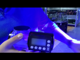 Видеообзор кормушки автокормушки JBL