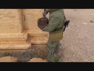 Мин - нет Премия России Хранители наследия - 2017 Инженерные войска спасли Пальмиру, Сирия