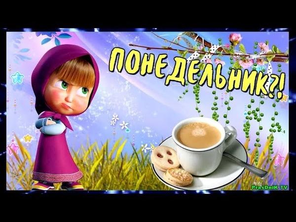 С понедельником! С добрым утром! Позитив для друзей! С началом недели!