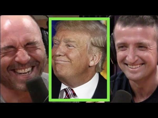 Joe Rogan Michael Malice on Trumps Trolling