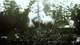 Западный фронт 1944 Western Front 1944