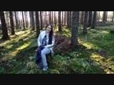 Прогулка по финскому лесу