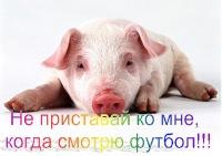 Александр Шемякин, 8 мая 1993, Санкт-Петербург, id174447006