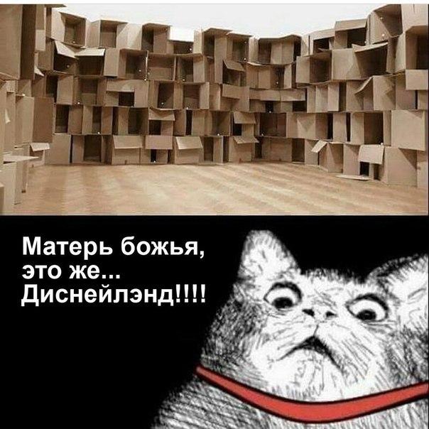 Фото №456249237 со страницы Олега Авдонькина