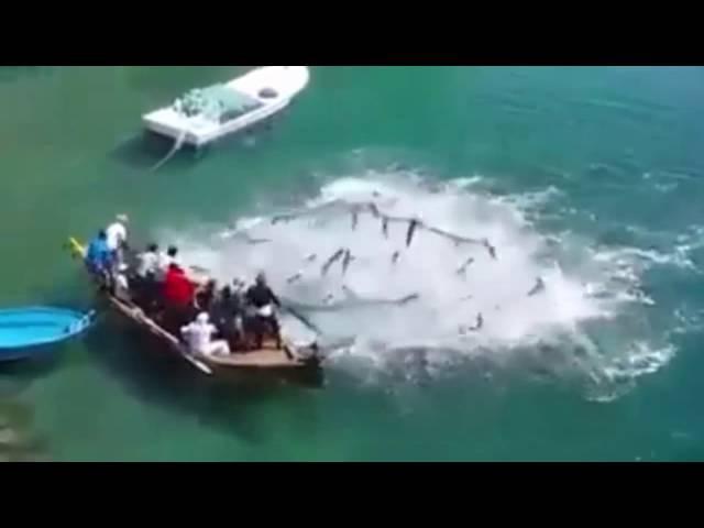 Pescaria e uma grande surpresa. Pescaria incrível 2