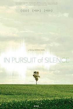 В погоне за тишиной