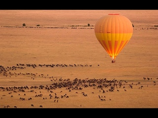 The Great Migration   Bucket List