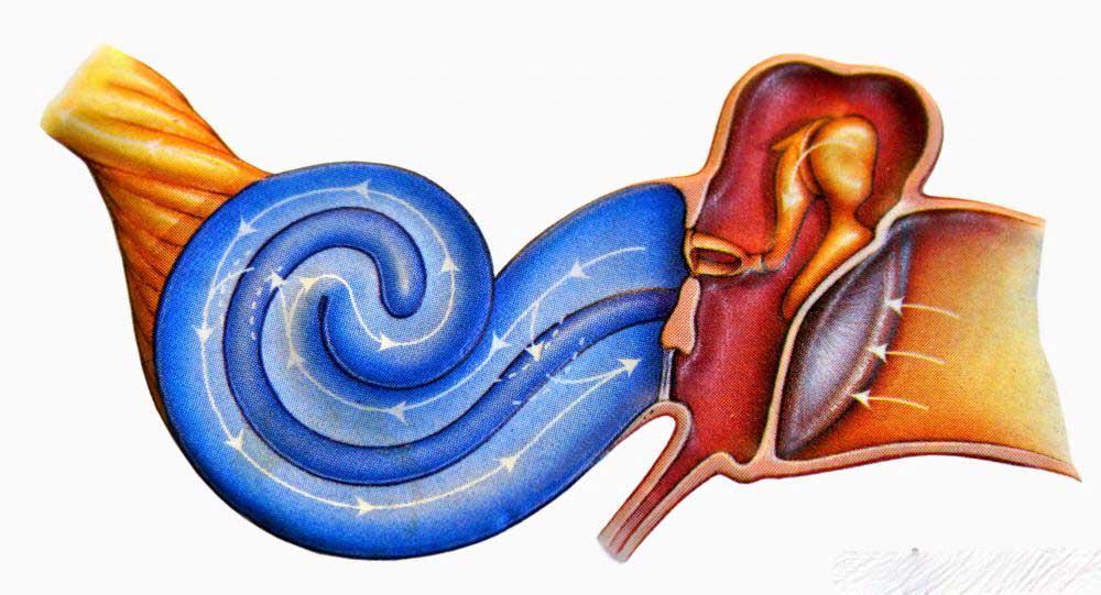 Каковы признаки ушной инфекции у детей