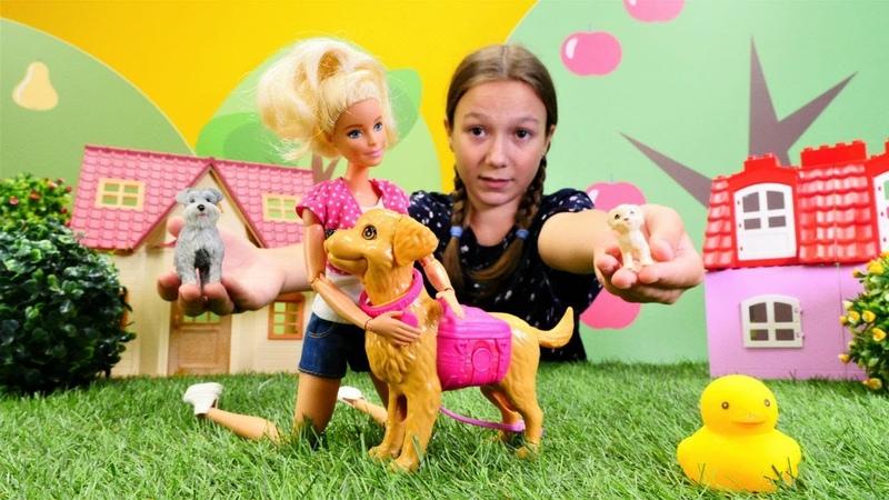 Kız çocuk oyunları. Barbienin köpeği kayboluyor.
