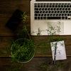 Сторителлинг | SMM |  Дистанционные онлайн курсы