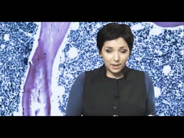 Документальный проект Победить рак, часть 3 (НТВ, 2012)