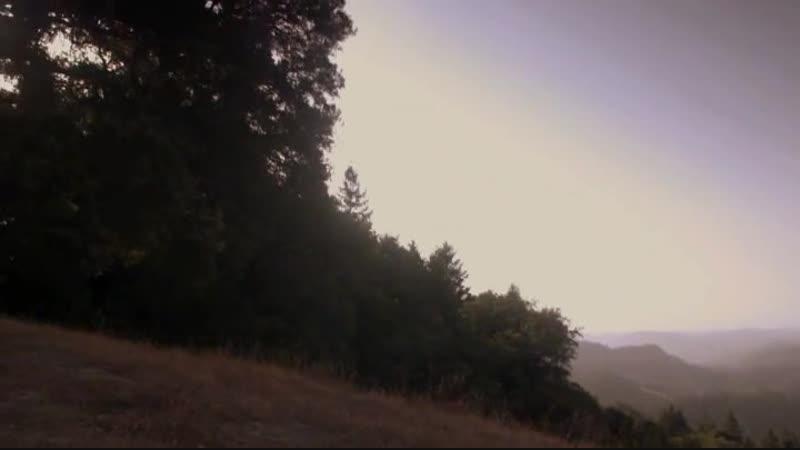 Watch Redwoods movies online free Watch Redwoods full movie