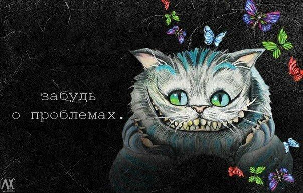 oV1W_n0AOP8.jpg