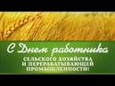 Чернушка День работника сельского хозяйства 2018 год. Видео студия Vizit studio_vizit